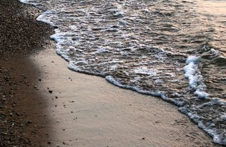 Shore Line by Stephanie Wallace